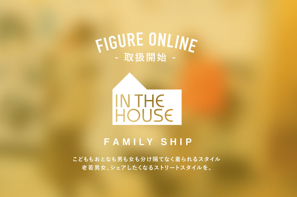 IN THE HOUSE ×<br>FIGURE ONLINE